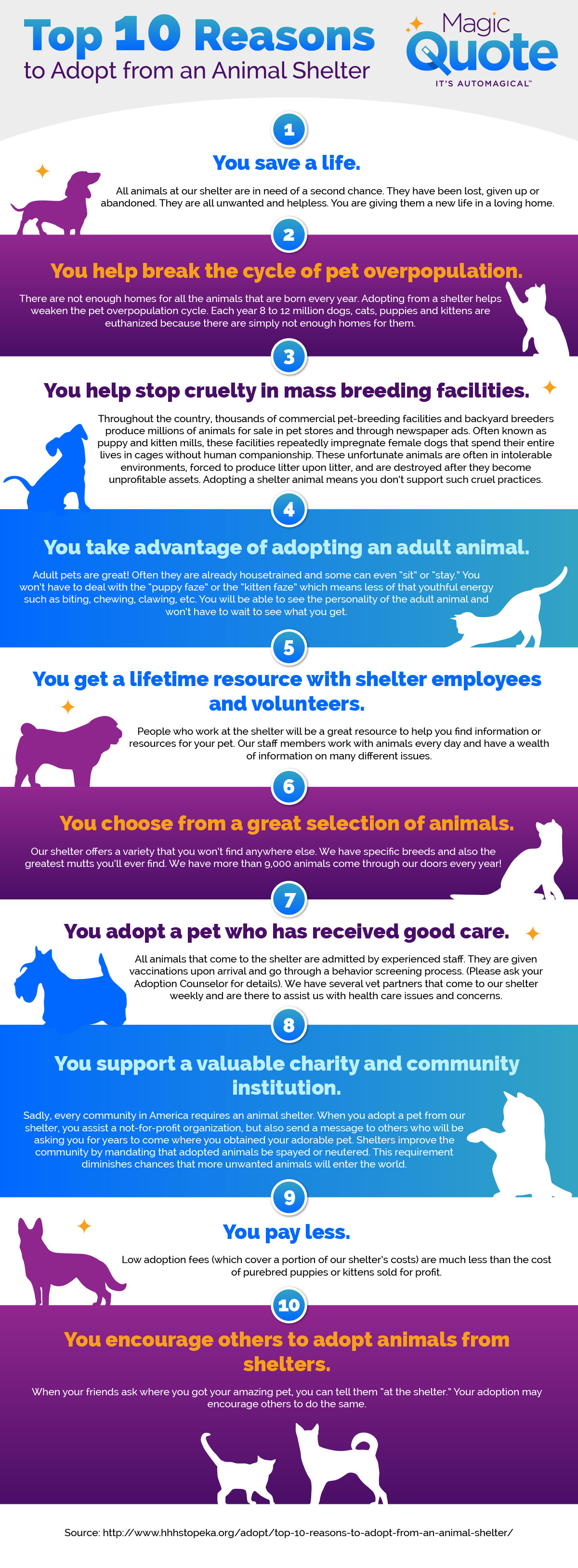 MQ-Infographic-Animal-Shelter