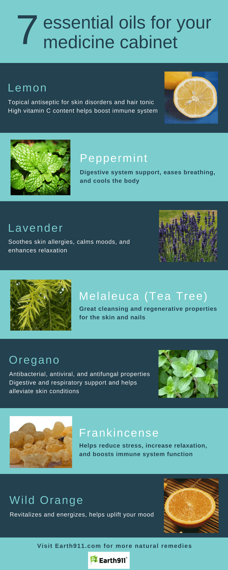 Infographic: 7 Essential Oils for Your Medicine Cabinet