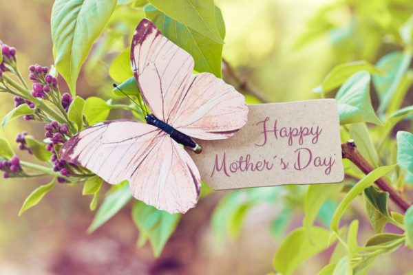 20 Eco-Friendly Mother's Day Gift Ideas